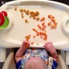 The Culinary Kid (6-9 Months)