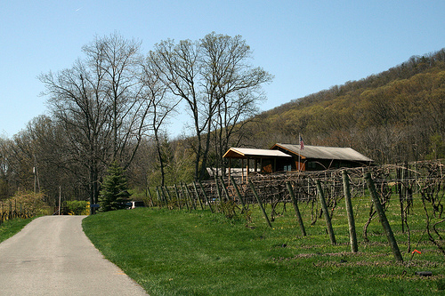 mount_nittany_winery