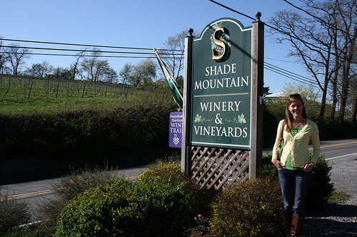 shade_mountain_vineyards