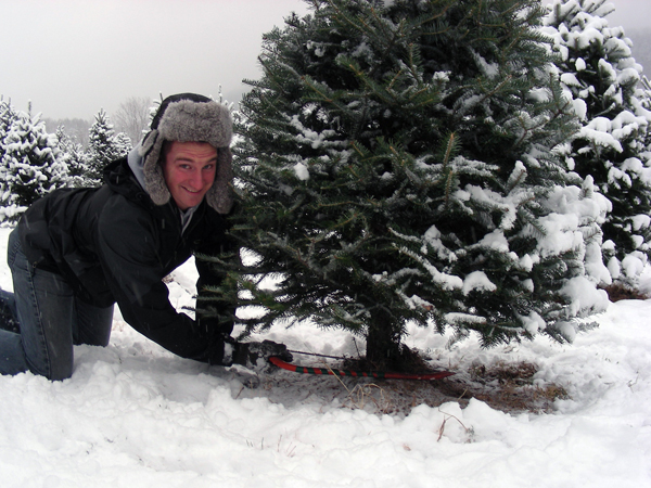 christmas tree chopping