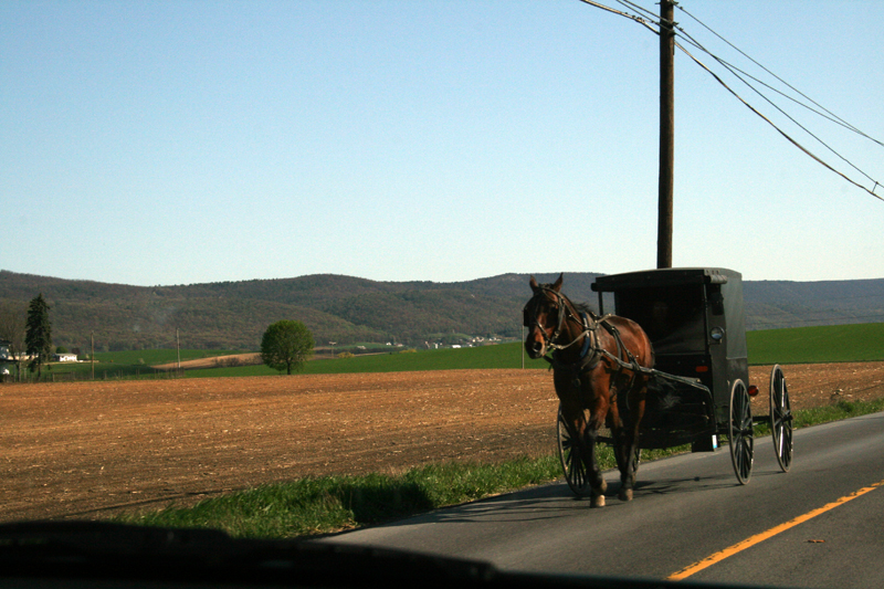 amish