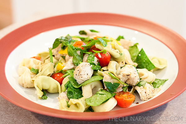The Culinary Couple » Balsamic Chicken Tortellini Salad