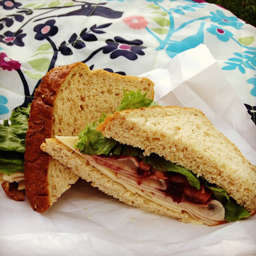 turkey-cranberry-sandwich