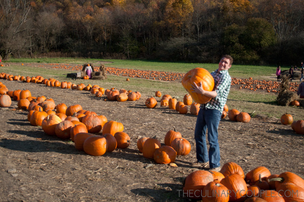pumpkinpatch03