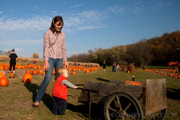 pumpkinpatch04